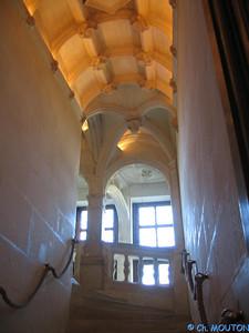 Chenonceau interieurs 29 C-Mouton