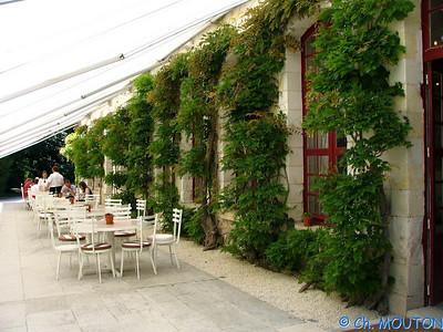 Chenonceau Orangerie 02 C-Mouton