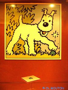Tintin 14 C-Mouton