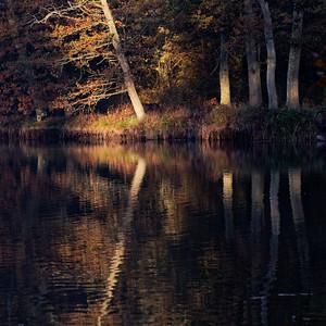 _MG_8133_©Ch  Mouton