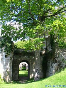 Chateau de la Bourdaisière 42 C-Mouton