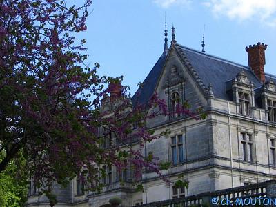 Chateau de la Bourdaisière 26 C-Mouton