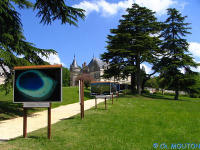 Chateau de la Bourdaisière 41 C-Mouton