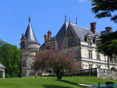 Chateau de la Bourdaisière 24 C-Mouton