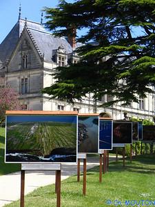 Chateau de la Bourdaisière 34 C-Mouton