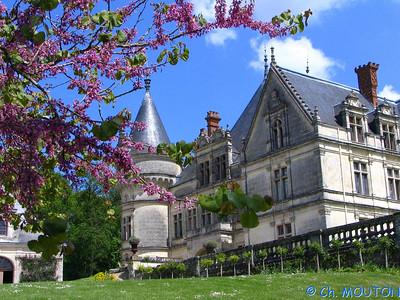 Chateau de la Bourdaisière 30 C-Mouton