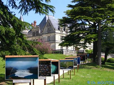 Chateau de la Bourdaisière 35 C-Mouton