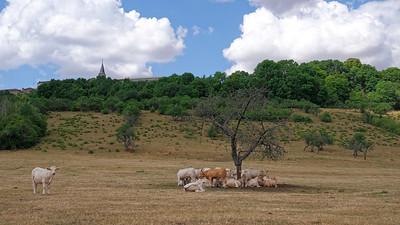 DSCF0884-©Ch-Mouton