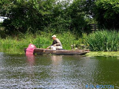 Canoe 028 C-Mouton