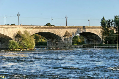 Pont royal 3 C-Mouton