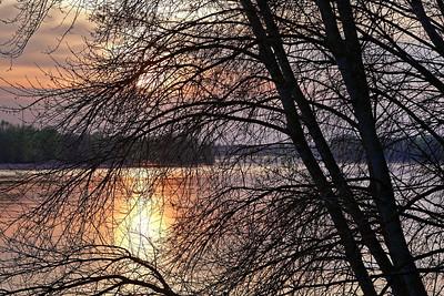 _MG_0677 -DxO-300dpi-©Ch  Mouton
