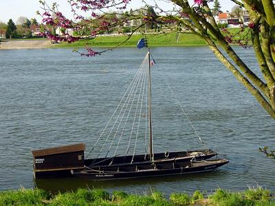 Marine de Loire 08 C-Mouton