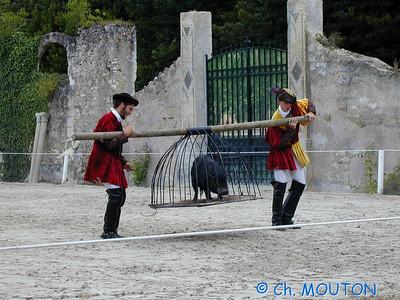 Chambord Spectacle équestre 15 C-Mouton