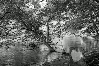 _MG_0195_DxO_©Ch  Mouton