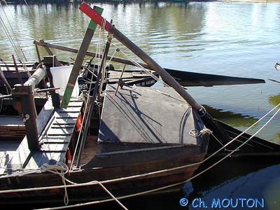 Fetes de Loire 2003 21 C-Mouton