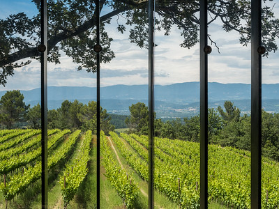 Les vignes vues depuis la chapelle