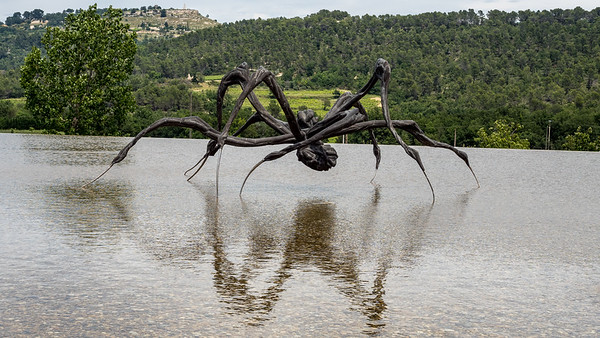 Louise Bourgeois : Crousching Spider