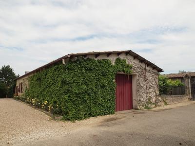 Les chaix de Château Smith Haut Lafitte