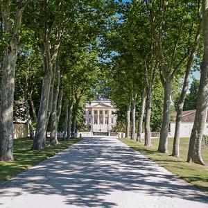 La grande allée bordée d'arbres menant au Château Margaux