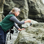 Ruby Beach, near Kalaloch, WA - Jean adding her cairn to the collection of hundreds that were already left there by others.