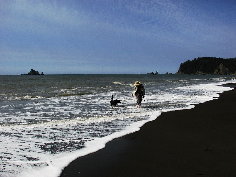 Rialto Beach, WA - Java loved playing in the water, especially when his favorite lady in the world was out there playing with him.