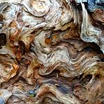 Pretty wood