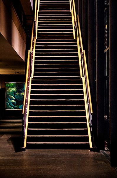 """The 39 Steps.  The capture is mine.  However the post processing was done by the professional graphic design artist <a href=""""http://www.kunzelmangraphics.com/"""">Ed Kunzelman.</a>"""