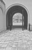 Gates-8369-71-3-LM1-B&W_Infrared