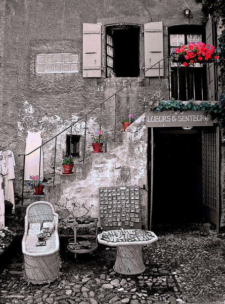 Lueurs & Senteurs<br /> B&W with colorized items