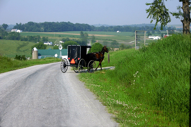 Ohio Amish Country<br /> Photo by Jessica Ford