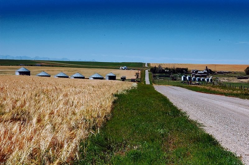 Country Lane <br> Saskatchewan