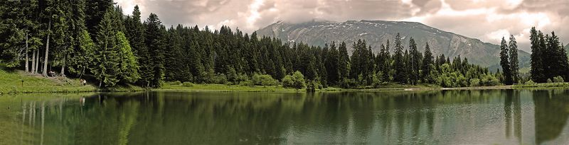 "Lac de Montriond <br> (A panorama.  Available in lengths up to 44"")"