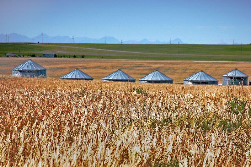 Wheat & Silos <br> Saskatchewan