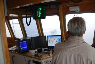 Machias Seal Island Trip - 011