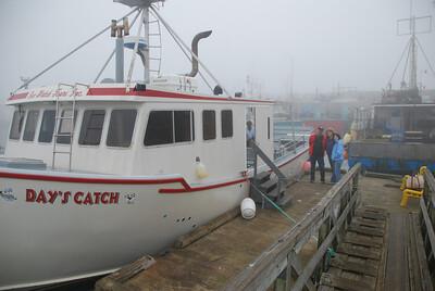 Machias Seal Island Trip - 001