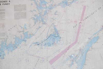 Machias Seal Island Trip - 007