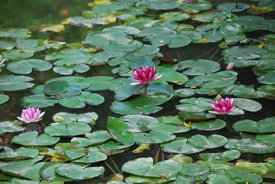 09-11-08 Huaqing Hot Springs (50)
