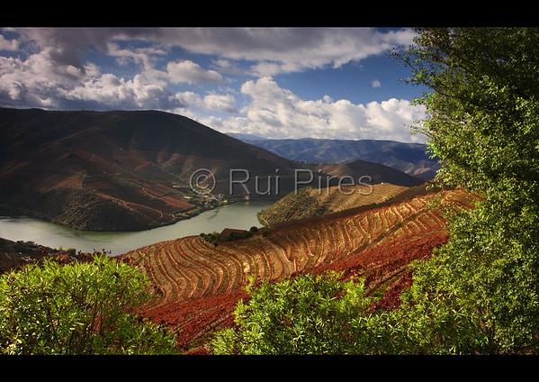 Douro River Valley RPDV_10021