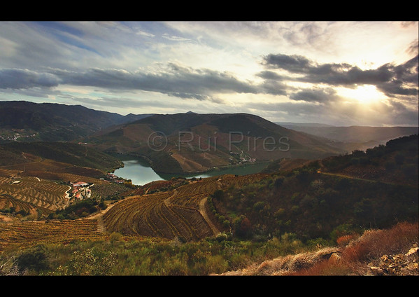 Douro River Valley RPDV_10025