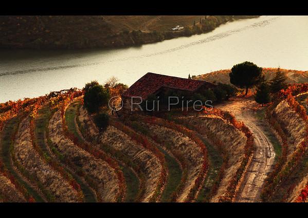 Douro River Valley RPDV_10010