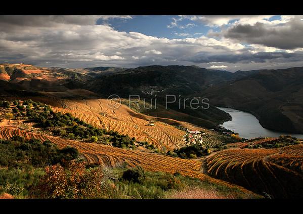 Douro River Valley RPDV_10019