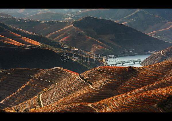 Douro River Valley RPDV_10004