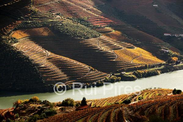 Douro River Valley RPDV_10002