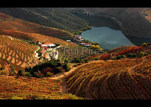 Douro River Valley RPDV_10016