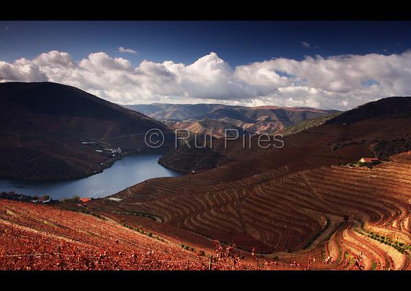 Douro River Valley RPDV_10024