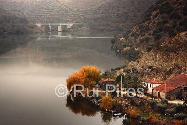 Douro River Valley RPDV_10003