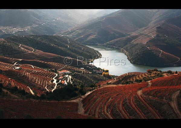 Douro River Valley RPDV_10020
