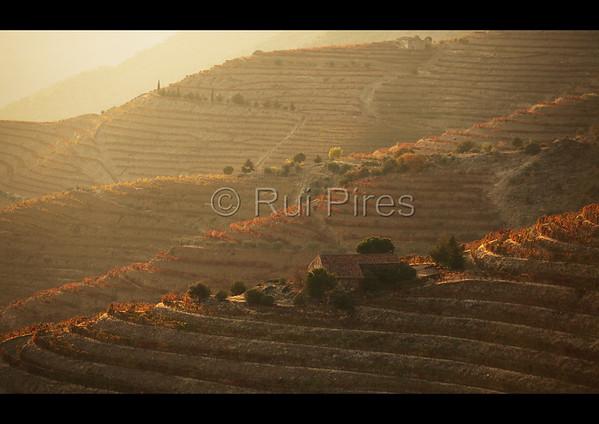 Douro River Valley RPDV_10009