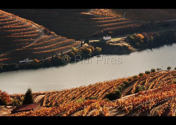Douro River Valley RPDV_10018