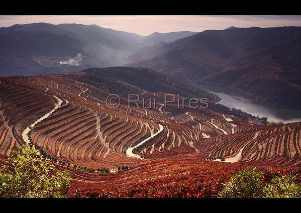 Douro River Valley RPDV_10013